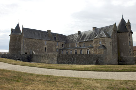 General view / General overview - Castle fort Charente - Castle of Saveilles - Saveille - Castle in Charente - Guided tour group - Guided family tour - Chateau nord Charente