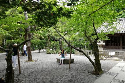 音叉ヒーリング講座の日本音叉ヒーリング研究会onsalaboの代表が鎌倉で音叉ヒーリングに浸っている写真