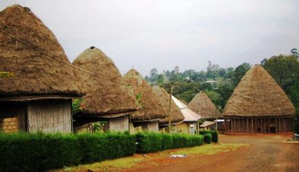 Ouest-Cameroun, Chefferie Bandjoun