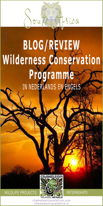 Wildlife programme volunteers in South Africa