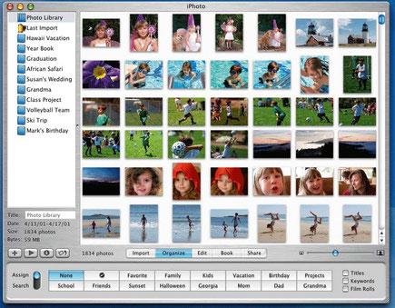 haz limpieza de fotos - www.AorganiZarte.com