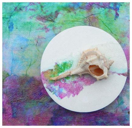 Schneckenhaus auf Gips, Farbige Tusche auf Papier, Holzobjekt, 2014