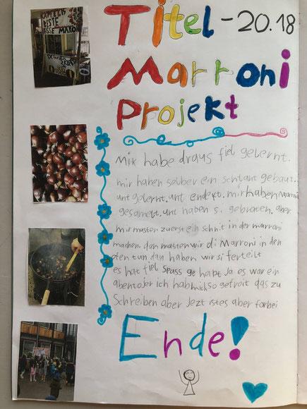 Abschluss-Poster Marroni Projekt