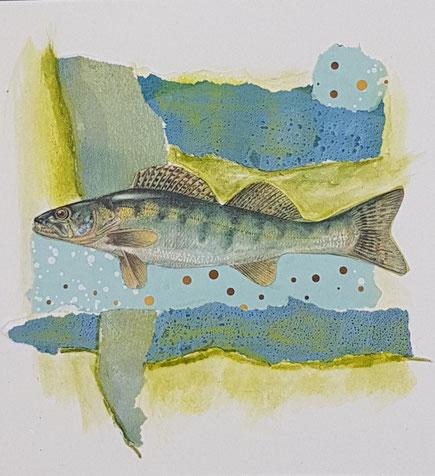 Blaugelbgrüner Fisch