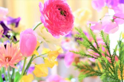 春の花たち。デイジー、チューリップ、ガーベラ、スイトピー。
