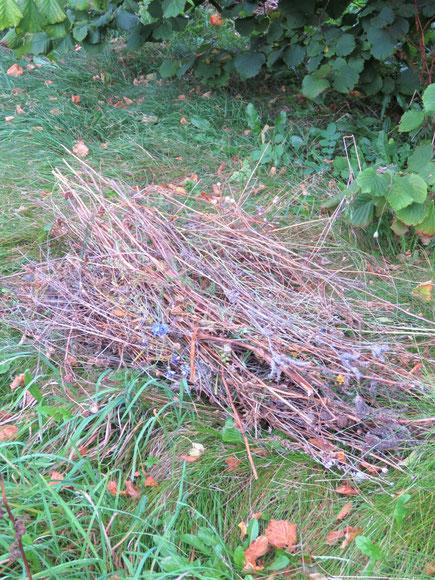 Schnittgut der Blumenwiese für die Überwinterung von Insekten.