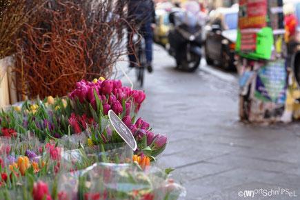 Frühling kommt in die Stadt