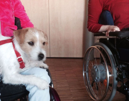 Therapiehund in einer Behinderteneinrichtung