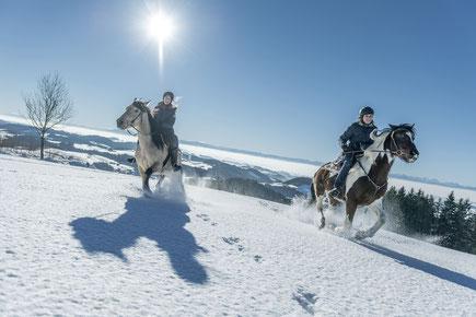 Winter, Winterreiten, Winteruraub, Reiturlaub