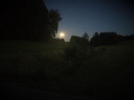 Wenn der Mond einmal rundum ist werden wir uns in Nele`s Revier wieder sehen.