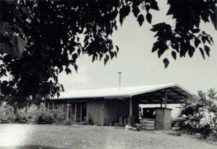 Amy Greenwell house 1950s