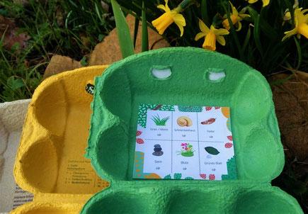 Natur-Bingo im Eierkarton zum Basteln - Upcycling