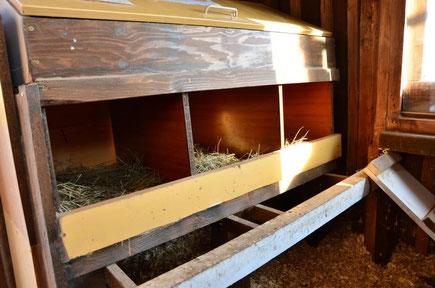 legenester selber bauen huehnerstall selber bauen. Black Bedroom Furniture Sets. Home Design Ideas