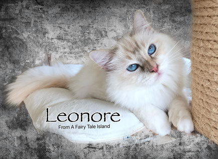Leonore From A Fairy Tale Island