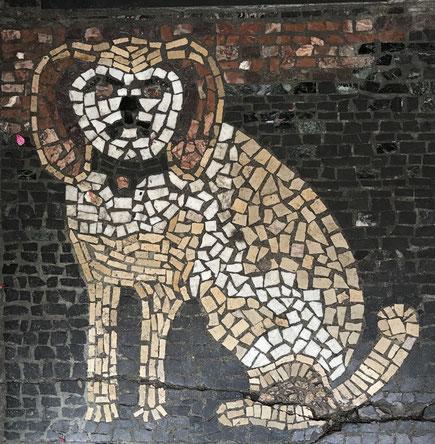 Mosaik des Cavete-Hundes am Eingang - Foto Henning Stoffers