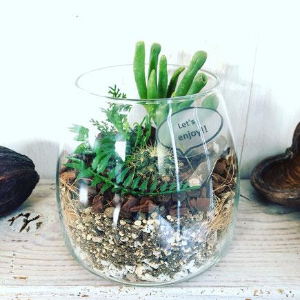 6月 〈長野 飯田 ワークショップ〉『多肉植物とサボテンのテラリウム』作り