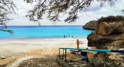 Karibik, Karibikreise, Backpacker, Backpacking, Zwei auf Achse, Travel the World, Westpund, Curacao, Meeresschildkröte, Willemstad, Punda, Otrabanda, Weltreise,