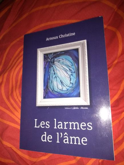 Photo de la couverture du livre Les Larmes de l'âme de Christine Arnoux