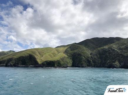 Ferry overtocht Nieuw-Zeeland