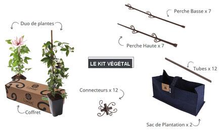 ©LUMAKI, kit végétal composition du coffret