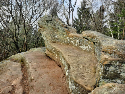 Ein großer Felst steht im Wald. Er hat die Form eines Sofas. Daher wird er Sofaklippe genannt.