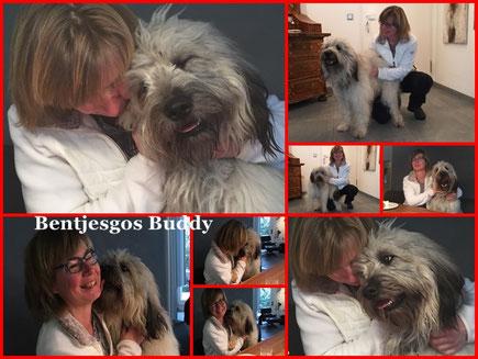 Wiedersehensfreude bei Bentjesgos Emil Buddy (Tango & Benni)