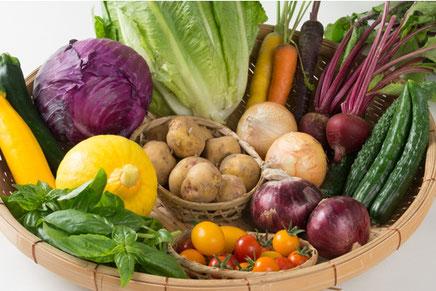ビーツ、ズッキーニ、伝統野菜、カラフル野菜