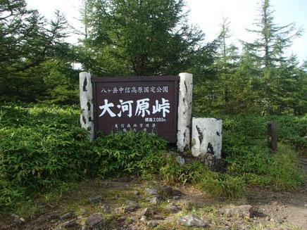 大河原峠 登山コース ガイド