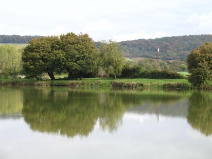 Etang de Châteauneuf Val de Bargis