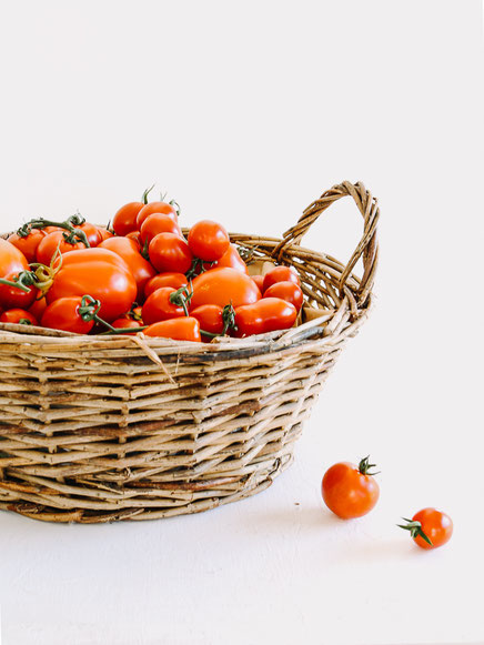 Tomatensauce für Pasta - haltbar machen und konservieren
