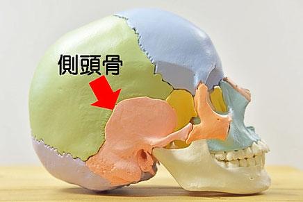 頭蓋骨と腰痛
