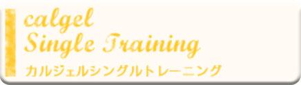 カルジェルシングルトレーニングコース