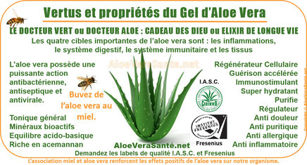 AloeVeraSante Beauté LR | le gel d'Aloe Vera en usage interne : anti-inflammatoire, antiseptique, hémostatique, antalgique, apaisant, immunisant, antibiotique, antiallergique etc