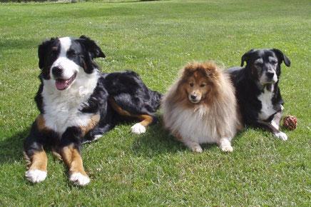 Xavier Linus mit seinen Freunden Carina und Bessy