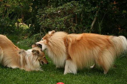 Besca Spielt mit ihrer Tochter