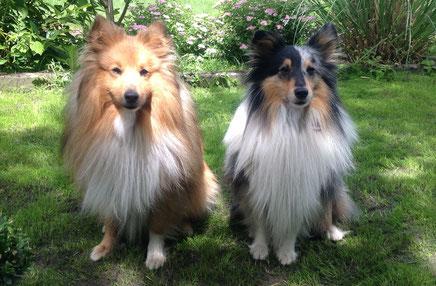 Zabo und Joshi of Atocha