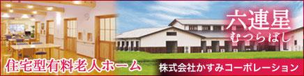 住宅型有料老人ホーム 六連星(むつらぼし)