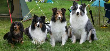 オマケ写真② 同じく9年前…両親の愛犬ミントと一緒に!