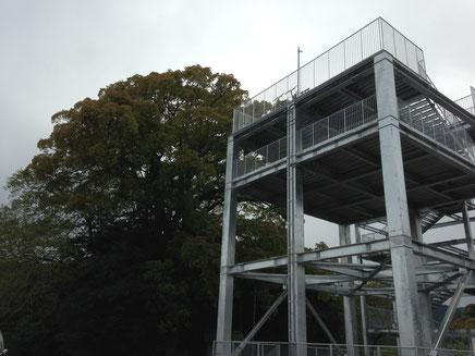 生見・西山神社の樹齢300年のクスのとなりのタワー