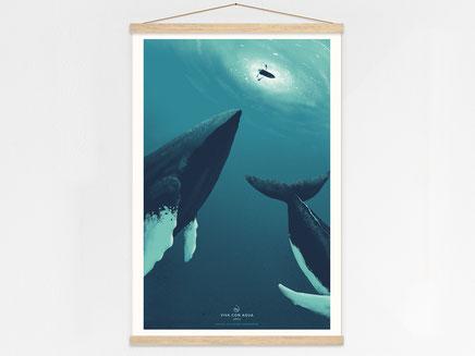 Hero Whales 2