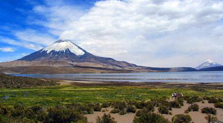 Altiplano der Atacama-Wüste