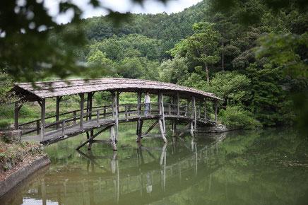 弓削神社の太鼓橋