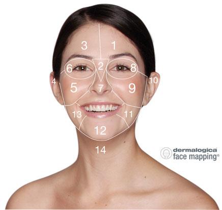 Face Mapping von Dermalogica, Kosmetik Institut Buchs