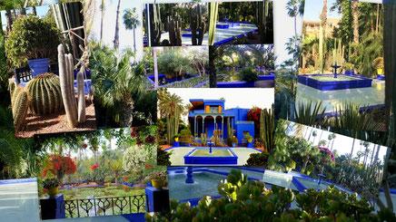 Le jardin Majorelle - Un jardin botanique touristique d'environ 300 espèces sur près d'1 hectare à Marrakech au Maroc et un musée de la culture berbère.