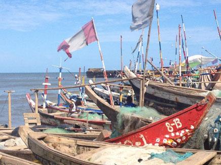 Fishing Harbour in Jamestown