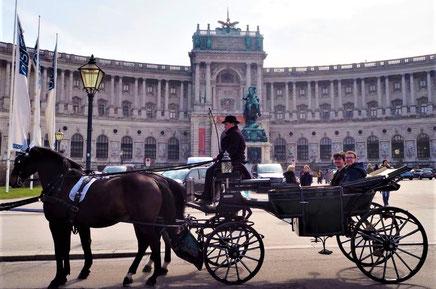 Stadtrundfahrt Wien