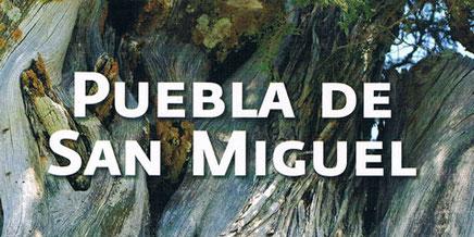 Reserva natural de la Puebla de San Miguel, Comunidad Valenciana.