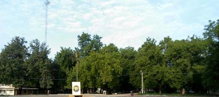 Kousseri, ville verte grace à Sahel vert