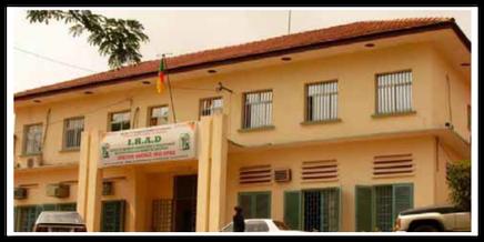 Irad, la Direction générale à Nkolbisson-Yaoundé