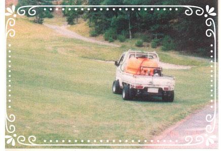 【楽輪】ラジアルタイヤ8本八輪型 芝仕様
